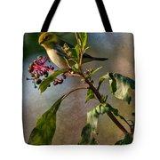 Black-throated Green Warbler Tote Bag