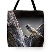 Black Throated Sparrow Tote Bag