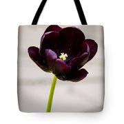 Black Tulip Tote Bag