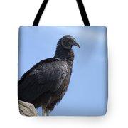 Black Vulture - Coragyps Atratus  Tote Bag