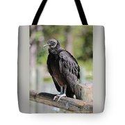 Black Vulture On The Boardwalk Tote Bag