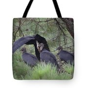 Black Vultures II Tote Bag