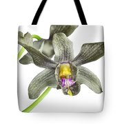 Black Yellow And Purple Orchid Tote Bag