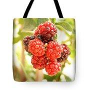 Blackberries Ripening Tote Bag