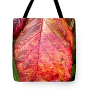 Blackberry Leaf In The Fall 3 Tote Bag