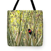 Blackbird In Reeds Tote Bag