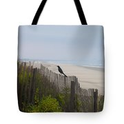 Blackbird On A Fence On The Beach Tote Bag by Bill Cannon