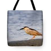 Blackcrowned Night Heron Tote Bag