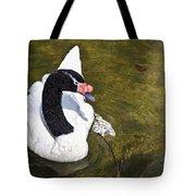 Blacknecked Swan Tote Bag