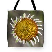 Blacksamson Echinacea Tote Bag