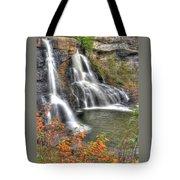 Blackwater Falls-2a Blackwater Falls State Park Wv Autumn Mid-morning Tote Bag