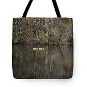 Blackwater Reflections Tote Bag