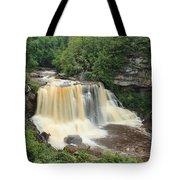 Blackwater River Falls West Virginia Tote Bag