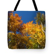 Blazing Autumn Colors - Just Lift Your Head Tote Bag