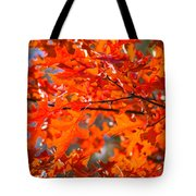 Blazing Maple Tote Bag
