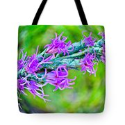 Blazing Star Tote Bag
