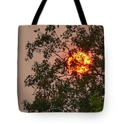 Blazing Sun Hiding Behind A Tree Tote Bag