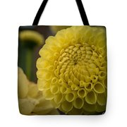 Blazing Yellow Dahlia Tote Bag