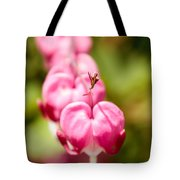 Bleeding Heart Blossom  Tote Bag