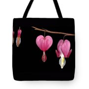Bleeding Heart Flowers Showing Blooming Stages  Tote Bag