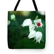 Bleeding Heart Vine Blossom Tote Bag