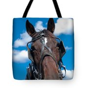 Blinders Because All Distractions Are Equal Tote Bag