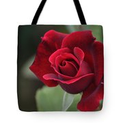 Blood Rose Tote Bag