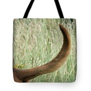 Bloodhound Tail Tote Bag