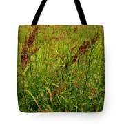 Bloody Battle Of New Orleans 2 Tote Bag