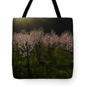 Blooming Almond Trees Tote Bag