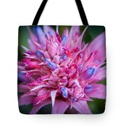 Blooming Bromeliad Tote Bag