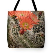 Blooming Cacti Tote Bag