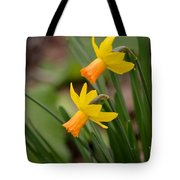 Blooming Daffodils Tote Bag