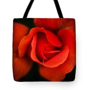 Blooming Red Rose Tote Bag