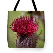 Blooming Spear Thistle Tote Bag