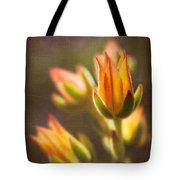 Blooming Succulents V Tote Bag