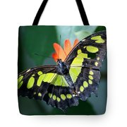 Blooms And Butterfly5c Tote Bag