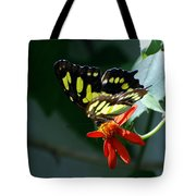 Blooms And Butterfly7c Tote Bag