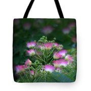 Blooms Of The Mimosa Tree Tote Bag