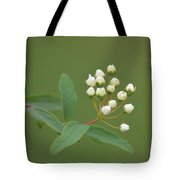 Blossoming Spirea Buds Tote Bag