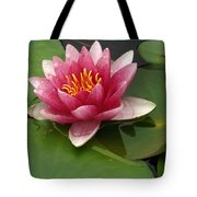 Blossoming Waterlily Tote Bag