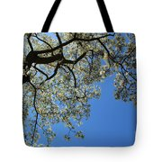 Blossoming White Magnolia Tree Against Blue Sky Tote Bag