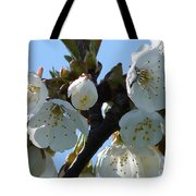 Blossoms 3 Tote Bag