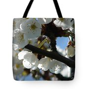 Blossoms 4 Tote Bag