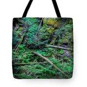 Blow Down Glacier National Park Painted Tote Bag