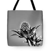 Blue And Green Bw Green Plant In Front Of A Blue Sky Tote Bag