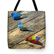 Blue And Indigo Buntings - Three Little Buntings Tote Bag
