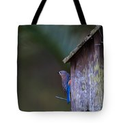 Blue And Rose Beige Plumage Tote Bag