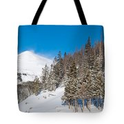 Blue And White Colorado Winter Tote Bag