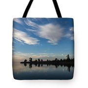 Brushstrokes On The Sky - Blue And White Serenity Tote Bag